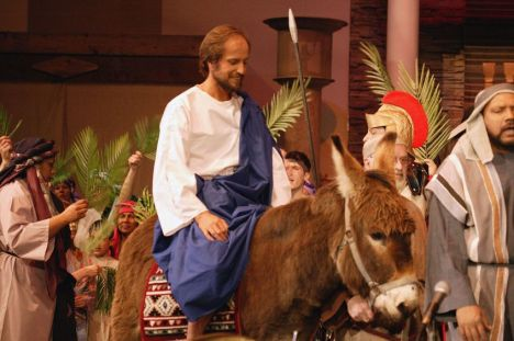 Palm Sunday - and what I said
